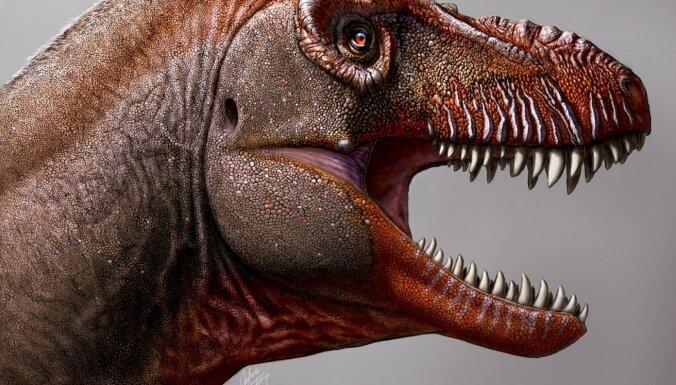 Šausminošo tiranozauru ģimenei piepulcējas nupat atklāts radinieks – 'nāves pļāvējs'