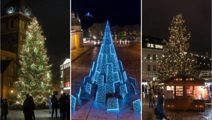 Kur skaistākā – Rīgā, Viļņā vai Tallinā: nobalso par krāšņāko eglīti Baltijā