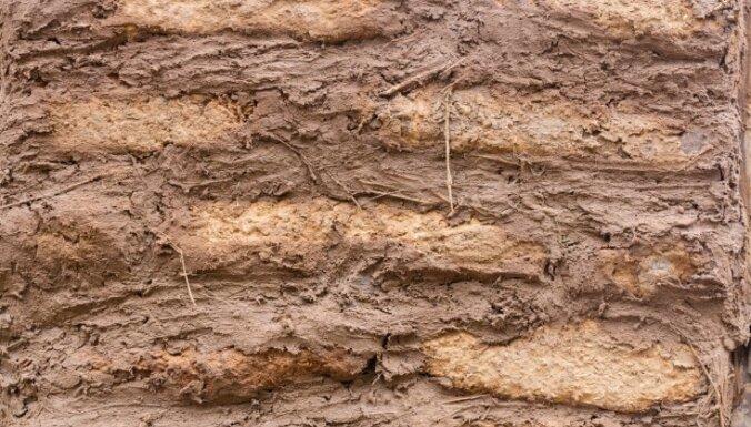 Atgriezties pie saknēm: būvnieka viedoklis par māla apmetumu