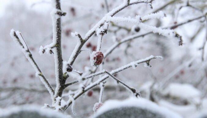 Синоптики: на Латвию надвигается похолодание, ожидаются дожди и снег