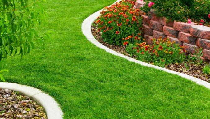 Sakoptākam dārzam: kā izveidot glītas dobju malas un apdobes