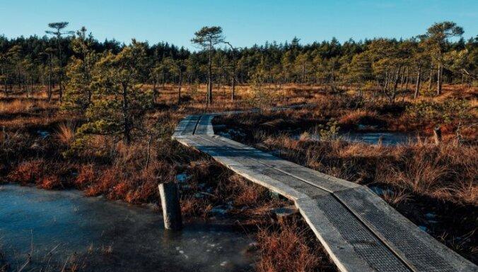 Latvijas skaistāko dabas taku karte un idejas, kurp doties brīvdienās