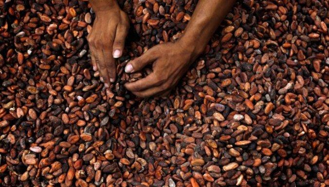 Laima прекращает производство шоколада из какао-бобов