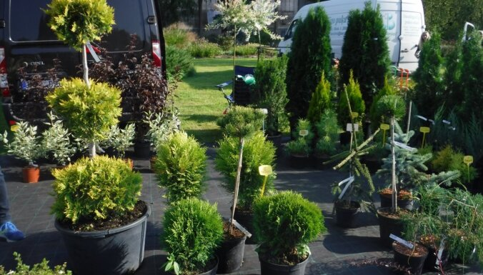 Nacionālajā botāniskajā dārzā atcelti 15. maija un 12. jūnija gadatirdziņi