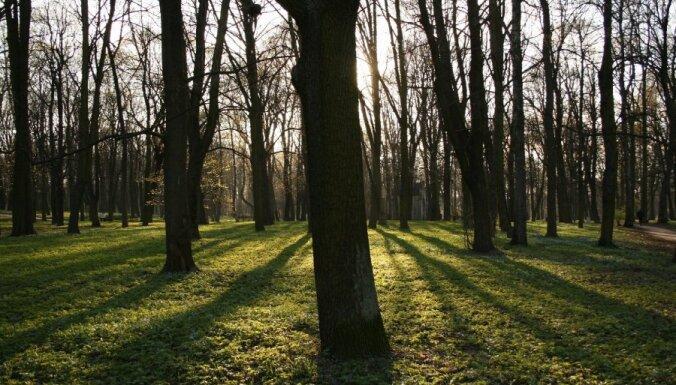 Теплая зима: в Латвии — новые температурные рекорды