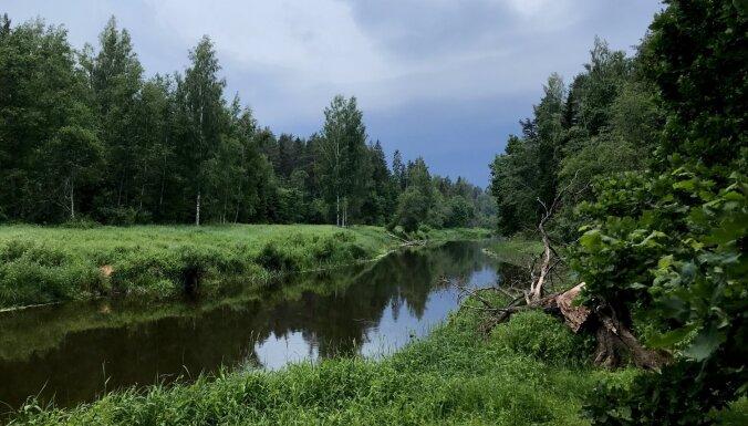 Foto: Skaņākalna dabas taka, kas pārsteidz ar dabu un dažādiem interesantiem elementiem