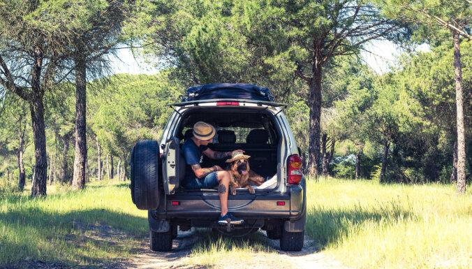 Auto aksesuāri, kas padarīs ceļošanu vasarā ērtāku