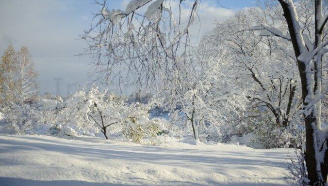 Больше всего снега за ночь выпало в Риге и Добеле