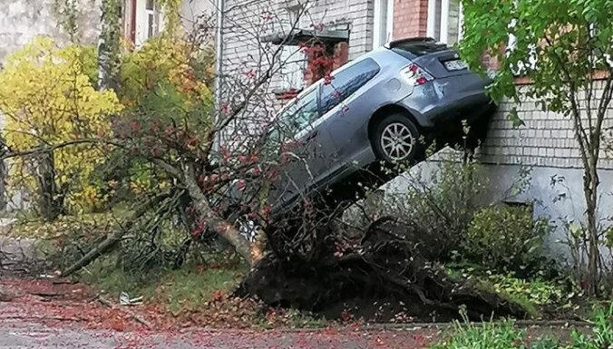 Foto: Iļģuciemā 'Honda' nogāzusi koku un atspiedusies pret ēkas sienu