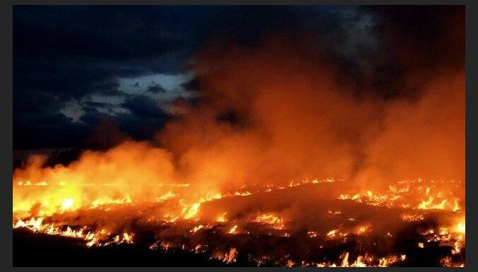 За сутки произошло четыре пожара прошлогодней травы