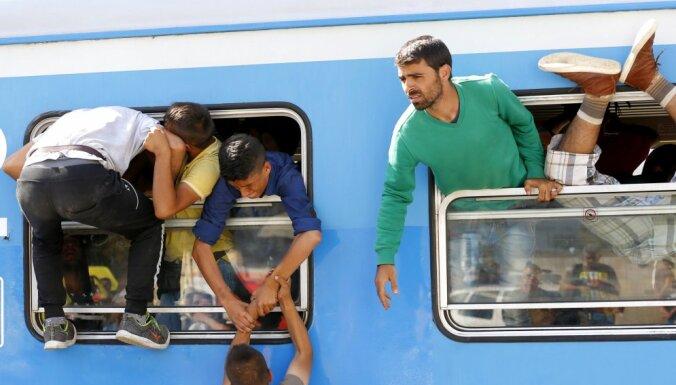 The Times: из Европы собираются депортировать более 400 тысяч мигрантов