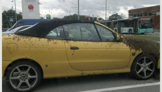 Neparasts foto: Bišu spiets aplipinājis automašīnu