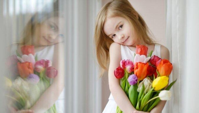 Ziedi, kas liks aizmirst par ziemu aiz loga