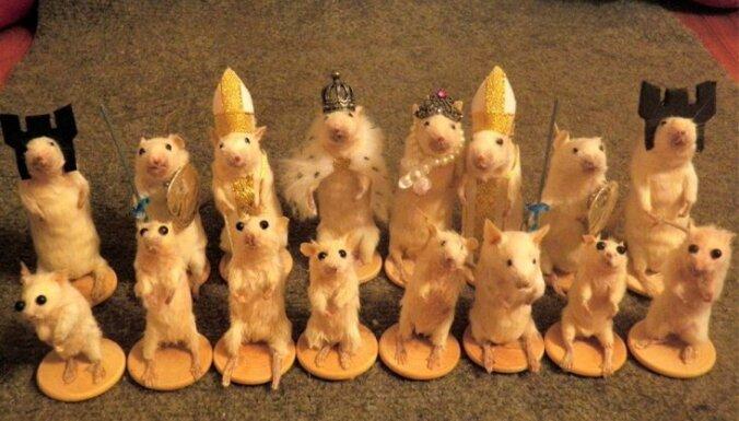 Foto: Radīts pilns šaha komplekts no mirušām pelēm