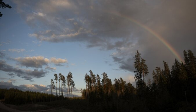 Прогноз погоды на воскресенье: солнце, грозы и дожди