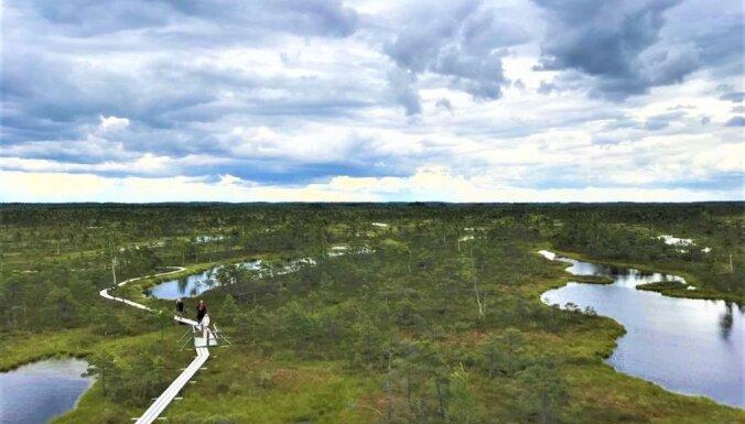 Andis Liepa: Kā sargājam dabu Latvijā?