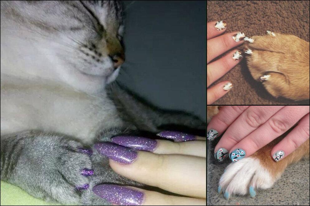 Девушки и кошки, ловите новый тренд: совмещать цвет ногтей с цветом когтей