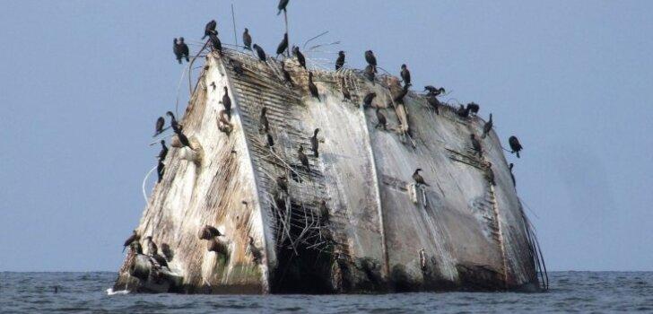 Rīgas piejūra: īsts kuģa vraks Daugavas grīvā un Ķeizarakmens Mangaļsalā