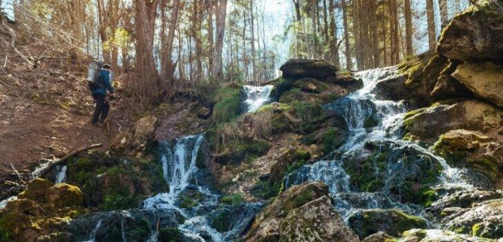 Dabas pērle meža ielokā – gleznainā Kazu grava Vidzemē