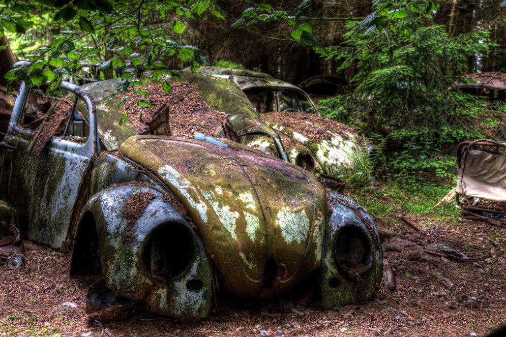 Эти автомобили на 70 лет застряли в пробке в лесу (ФОТО)