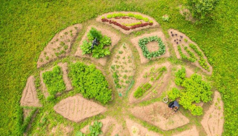 Pamācoši, iedvesmojoši un pārsteidzoši – dārzi, kas apciemoti 2017. gadā