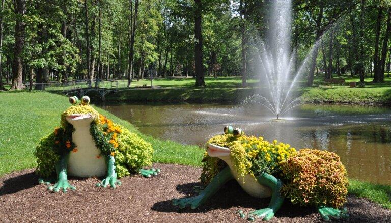 Ziedu ežu ģimene un košas vardes – Ludzas krāšņās ziedu rotas