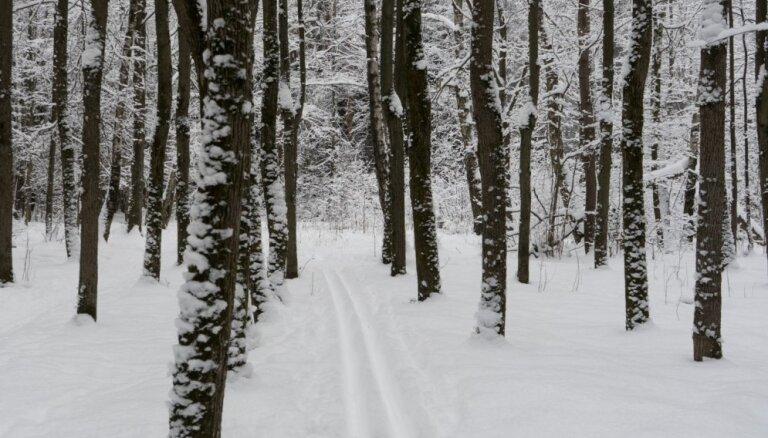 Зима не сдается: в ночь на субботу приморозит, снег и дожди в два раза превысят норму