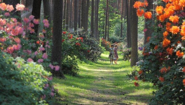 Jaunā akcijā aicina apceļot Latvijas un Igaunijas skaistākos dārzus un parkus