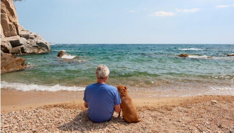 Piecas suņu šķirnes, kas piemērotas senioriem. Iesaka kinologs