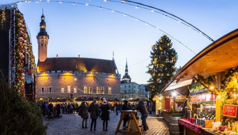 ФОТО: В Таллине установят новогоднюю елку уже 8 ноября