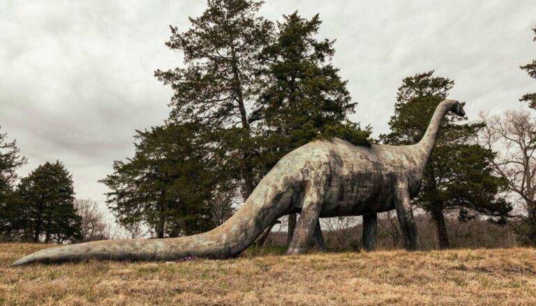 Skumji foto: Savulaik varenākais dinozauru parks grimst aizmirstībā