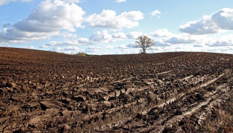 Из-за солнечного апреля могу погибнуть посевы, крестьяне говорят о засухе