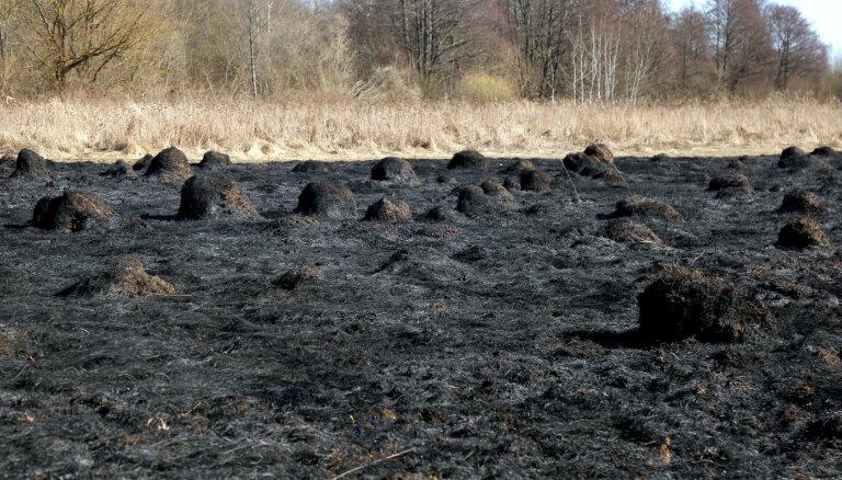 Labajā laikā pieaug kūlas un meža ugunsgrēku skaits