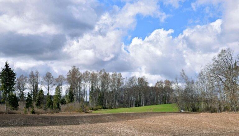 На следующей неделе в Латвии наступит астрономическая весна