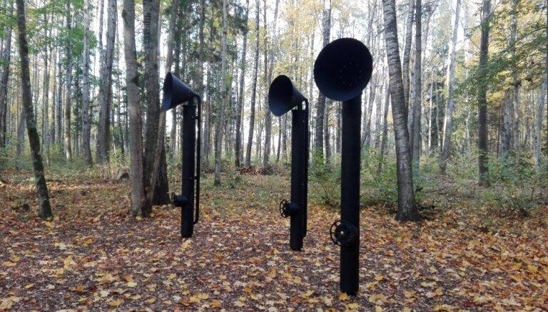 Jauna vieta pastaigām: Cīravas Mežaparkā atklāta Skaņā taka