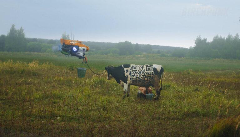 'Cehs.lv': Ko iesākt ar Z paaudzes ņuņņām jeb 'Mūsdienu jaunieši pat govi neprot izslaukt!'