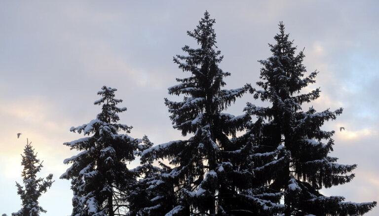 Sestdien sāksies astronomiskā ziema; tiks aizvadīta gada īsākā diena