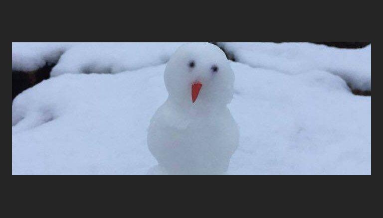 Lasītāja foto: Latvijā uzcelts pirmais sniegavīrs