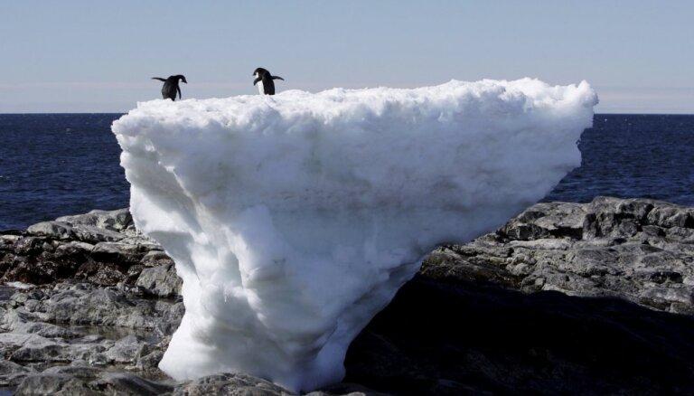 Inficēšanās ar jauno koronavīrusu konstatēta arī Antarktīdā