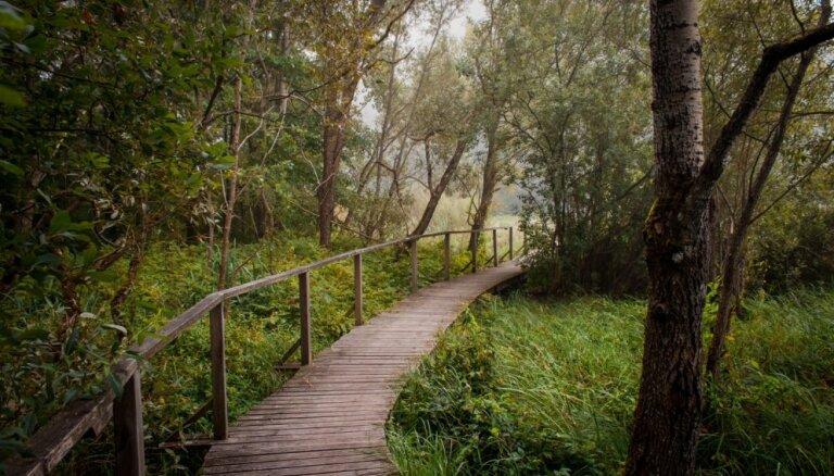 Brīvdienu maršruts: idejas pavasara baudīšanai Kokneses novadā