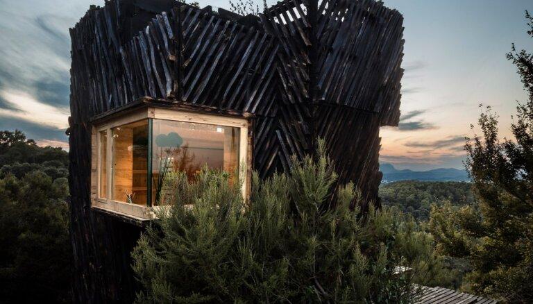 """ФОТО. Деревянный дом """"для карантина"""", который построили всего за пять месяцев"""