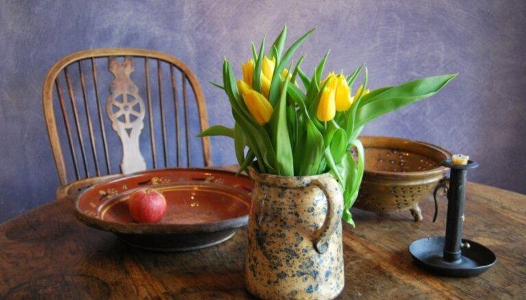Košums uz galda - tulpes