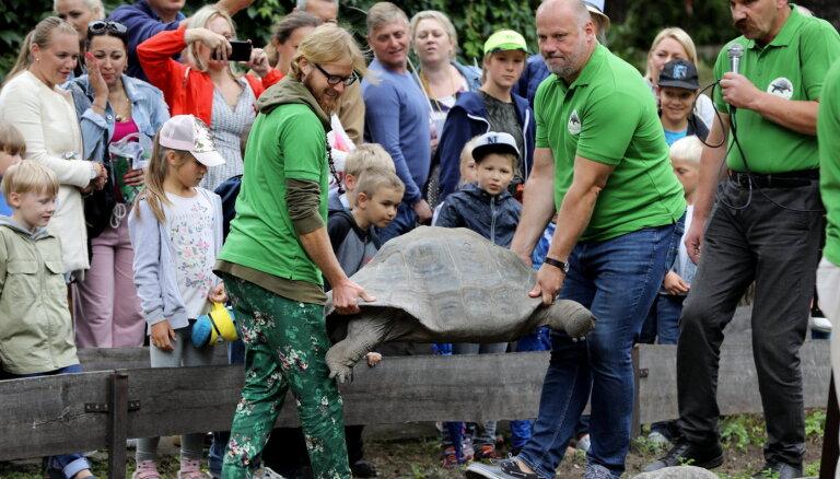 ФОТО: В Рижском зоопарке прозошло уже 20-е по счету взвешивание огромных черепах