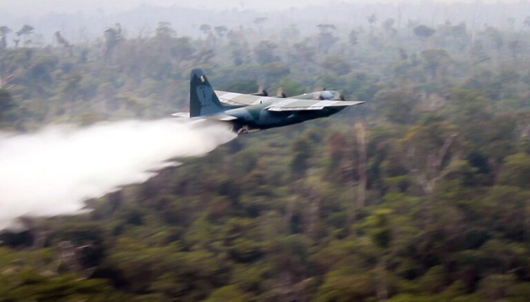 Семь стран Южной Америки договорились о защите лесов Амазонии
