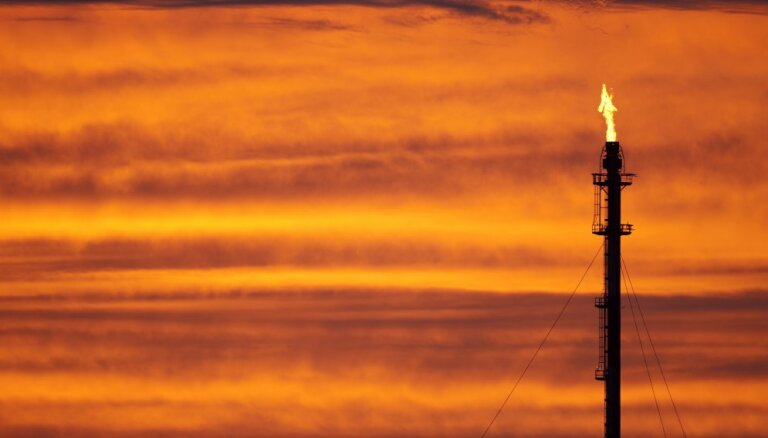 "В ОПЕК предрекли скорый рост нефти, в падении цен обвиняют ""новичков"""