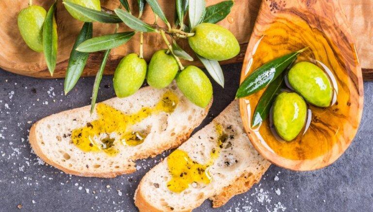 В Италии заканчивается оливковое масло? Опасная бактерия угрожает урожаю