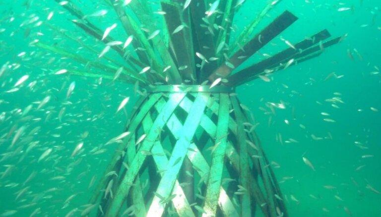 Kad ar sauszemes muzeju vien nepietiek: zemūdens skulptūru parks Floridā