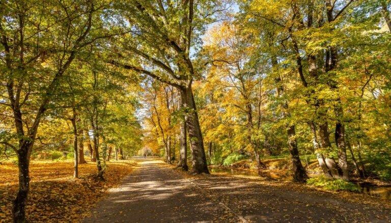 Krāšņa rudens izskaņa Saldus pusē: vietas, ko pagūt apskatīt