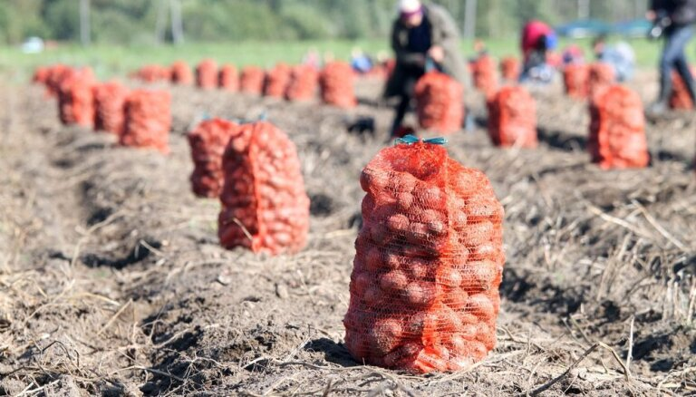 Латвия не планирует снижать использование пестицидов