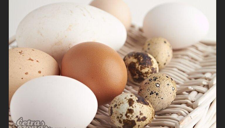 Перепелиные яйца:состав, лечение, польза